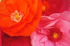 Gwynn Wasson Designs: {Tips & Hints} Giant Tissue Paper Flower Tutorial Tissue Paper Flowers, Giant Paper Flowers, Diy Flowers, Small Flowers, Handmade Flowers, Flower Decorations, Alice In Wonderland Tea Party, Paper Flower Tutorial, Wedding Planning Tips