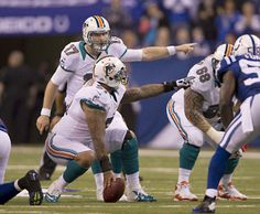 Miami Dolphins identity remains unclear