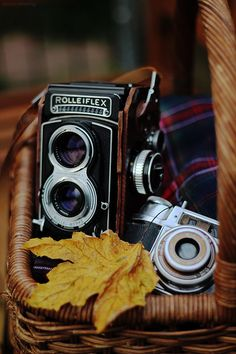 Vintage Camera Rolleiflex for autumnal feeling - Antique Cameras, Old Cameras, Vintage Cameras, Photography Camera, Love Photography, Pregnancy Photography, Underwater Photography, Creative Photography, Classic Camera