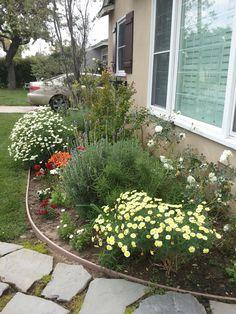 Front garden in the making... #gardening #garden #flowers