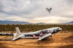 Artwork: Roa / Up in the Air: Robbie Maddison.