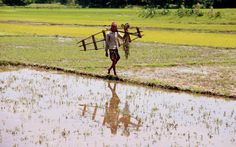 A farmer going to his work..