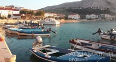 Widzieliście już kiedyś Chorwację w Październiku? My odbyliśmy wizytę na wyspie Pag, wróciliśmy kilka dni temu i chwalimy się takimi oto widokami.   Zobacz więcej zdjęć >> http://divingpag.com/…/25-chorwacja-pazdziernik-nurkowanie-…  Nurkowanie w Chorwacji z Bazą Nurkową nie jest jeszcze możliwe, aż do maja, my zapraszamy jednak na wyspę Pag o każdej porze roku! Piękne widoki można tu podziwiać właściwie wszędzie, a nurkować można zacząć na majówkę w 2016 roku!