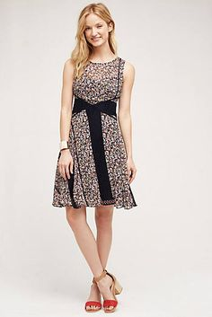 Windswept Lace Dress