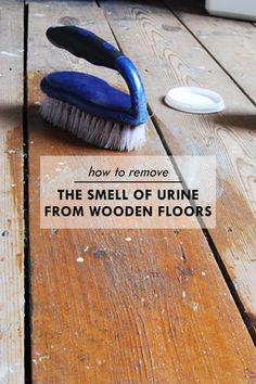 How To Get Rid Of Dog Pee Smell On A Wood Floor Stains