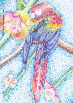 Parrot -Pointillism- by Kendrass on DeviantArt Stippling Drawing, Parrot Drawing, School Painting, 6th Grade Art, Dot Art Painting, School Art Projects, Commercial Art, Impressionist Paintings, Art Moderne