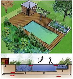 Dans cette configuration, le bassin de baignade est placé entre deux zones de plantations. La régénération 1 est bordée d'une margelle en pierre, tandis qu'une large terrasse en bois entoure l'espace de baignade. 2. Son eau chargée passe dans la zone de filtration et de dépuration naturelle. 3 Puis elleest évacuée par une bonde de fond jusqu'au local technique abritant la filtration mécanique et la pompe. © lespaysagistes.com