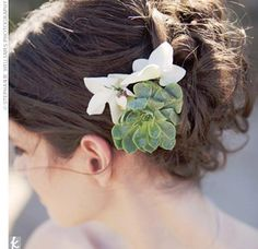 A small succulent looks both sculptural and elegant in this bride's hair. Many blooms will wilt as the day wears on, but these desert flowers delight into the night.  Photo by: Stephanie Williams Photography