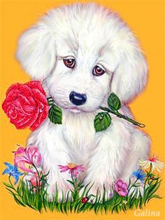 Animated Gif by Gigi Normand Beautiful Love Pictures, Cute Love Images, Beautiful Gif, Cute Pictures, Calin Gif, Gif Bonito, Love You Gif, Beautiful Flowers Wallpapers, Flower Phone Wallpaper