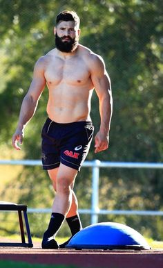 For the Love of Rugby & Bears : Photo