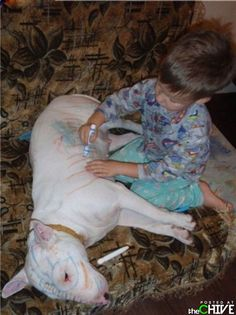 Oh you know...just coloring the dog...