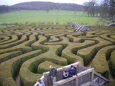 Labyrinth in Longleat Castle Wiltshire, England