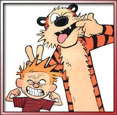 Calvin and Hobbes #brilliant