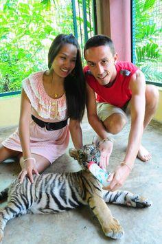 The Tiger Kingdom 3 - Chiang Mai