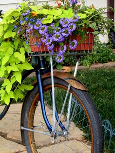 Purple flowers and plants in the front basket of a bike