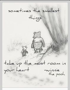 Sometimes the smallest things take up the most room in your heart  Winnie The Pooh