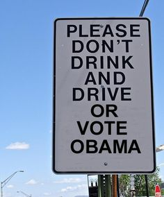 Whoever votes for Obama should be charged with voting while stupid.