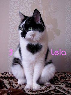 For Lela