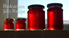 This post may contain affiliate links for your convenience. Thank you for your continued support of Lovely Greens! Last year I planted two redcurrant bushes with the idea of using their berries to make preserves. In the first year they produced about 600 grams of fruit and then more than double that the second year. …