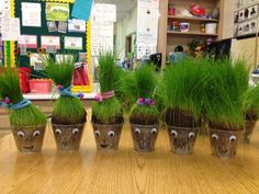 Grass Heads are a great Spring/Summer project. Kids learn about nature, growth and patience! Earth Day Activities, Spring Activities, Science Activities, Toddler Activities, Science Projects, Preschool Garden, Preschool Crafts, Science For Kids, Art For Kids