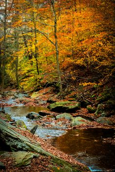 Autumn Creek by Chasing Railways Photography**