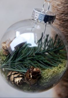 Clear glass bulb filled with moss, greenery and mini cones. LOVE IT!