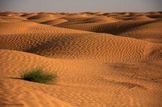 Ksar Ghiliane, Sahara, konkurs, TUNEZJA
