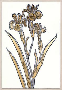 Historical Botanical 4 | Natural Curiosities
