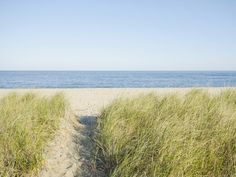 The Best Beaches in New England for a Summer Getaway - Condé Nast Traveler