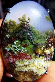 Photo: Plume agate from Trenggalek- Indonesia