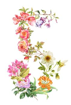 fiori Nail Polish nail polish 5 below Bunch Of Flowers, Botanical Flowers, Botanical Illustration, Botanical Prints, Floral Flowers, Vintage Flowers, Colorful Flowers, Beautiful Flowers, Floral Prints