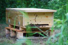 bienenhaus selber bauen imkern pinterest bienenhaus selber bauen und bienen. Black Bedroom Furniture Sets. Home Design Ideas