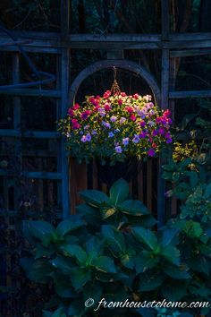 Highlight hanging baskets with down light | 8 Landscape Lighting Effects And How To Use Them