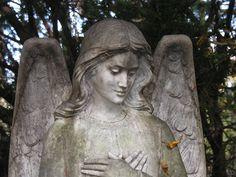 Juniper Hills Cemetery - Bristol, RI