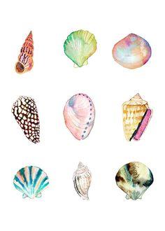 5 x 7 Shell Collection Print. Watercolor Sea Shells. Coastal Art.