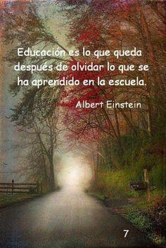 La educacion ....
