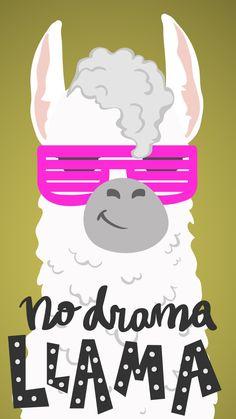 No drama llama wallpaper Girly Wallpaper, Tumblr Wallpaper, Animal Wallpaper, Beautiful Wallpaper, Tumblr Backgrounds, Wallpaper Backgrounds, Iphone Wallpaper, Positive Backgrounds, Funny Llama