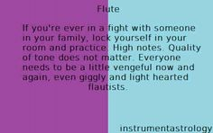 I'm not a flute player but this is a genius idea
