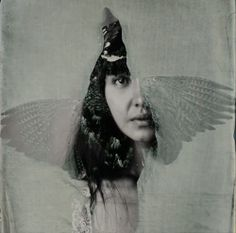 Untitled by Isa Marcelli