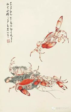 Oriental, Witch Aesthetic, China Art, Exotic Fish, Traditional Paintings, Chinese Painting, Ink Painting, Illustration Art, Illustrations