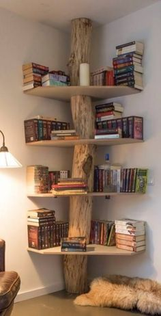 Image result for tree bookshelf