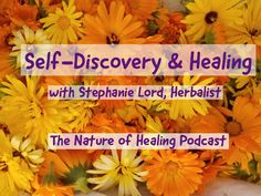 Are you ready to reclaim your inheritance as a self-healer? Learn the truth about your body's innate wisdom to heal itself, and unleash your inner healer. Spiritual Warrior, Self Healing, Self Discovery, Healer, Choices, Reflection, Medicine, Lord, Mirror