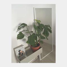 ferm LIVING Plant Box in light grey: http://www.fermliving.com/webshop/shop/news-living-aw15/plant-box-grey.aspx