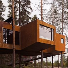 Seven treehouses you can sleep inside at Sweden's Treehotel # 6 The Dragonfly - Rintala Eggertsson Architects