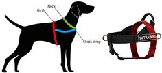 Nylon Dog Harness for Pulling, Tracking, Training and SAR [H17##1073 Better Control Multi-Purpose Nylon Dog Harness] - $34.90 : Dog harness , Dog collar , Dog leash , Dog muzzle - Dog training equipment from Trusted Direct Source - Home, Dog Supplies