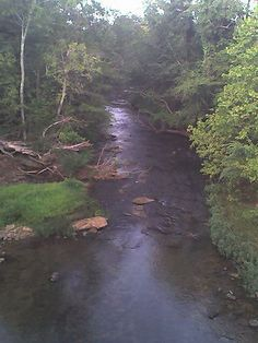 "Flint River & Brier Fork join adjacent to Winchester Road in Madison County, AL. It's also known as the ""Three Forks of the Flint."" - One of the beauties of living in Alabama, I pass each day, I love to look for deer standing in the water...Huntsville, Al & New Market, AL"