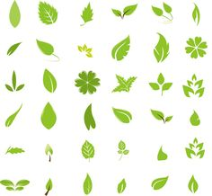 free graphic design   Green Leaf Design Elements   Free Vector Graphics   All Free Web ...