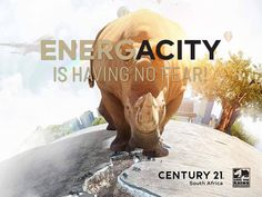 No matter the terrain, we will cross it for you! A Worldwide Leader In Real Estate in partnership with Save the Rhino International.  Buy | Sell | Rent www.century21.co.za www.savetherhino.org/ #C21 #Leaders #buy #sell #rent #ENERGACITY #support #worldwideleader #givingback #SAVETHERHINO @savetherhinointernational Save The Rhino, Property For Sale, South Africa, Real Estate, Stuff To Buy, Real Estates