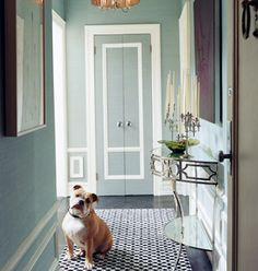 Domino magazine, NYC, Manhattan, NY, New York apartment of Lily Maddock, Enlisting interior designer (and cousin-in-law) Celerie Kemble, clothing designer Lily Maddock transformed a dull apartment into one brimming with intrigue. Foyer, demilune table, bulldog
