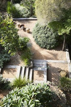 The new look Aussie backyard – Native Plant Project - Coastal Gardens, Beach Gardens, Outdoor Gardens, Australian Garden Design, Australian Native Garden, Bush Garden, Dry Garden, Gravel Garden, Hillside Landscaping